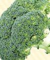 بهبود سیستم ایمنی با 1 + 14 ماده غذایی