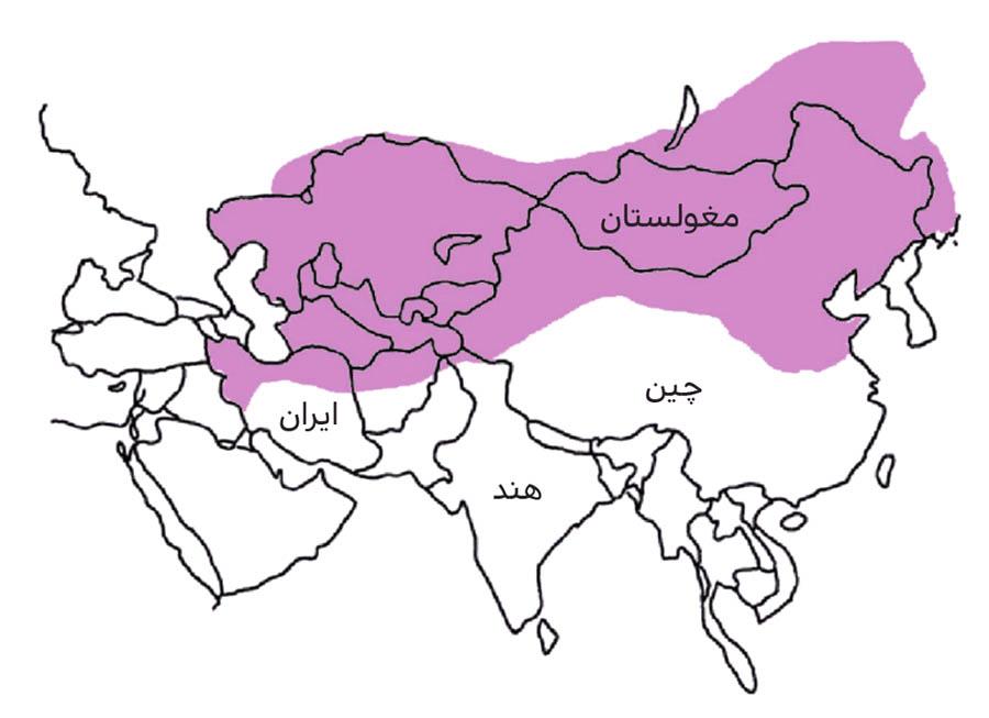 نقشه آمار سرطان مری